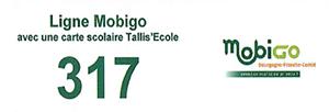 Ligne Mobigo 317