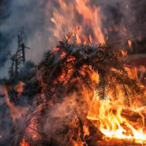 Règlementation feu