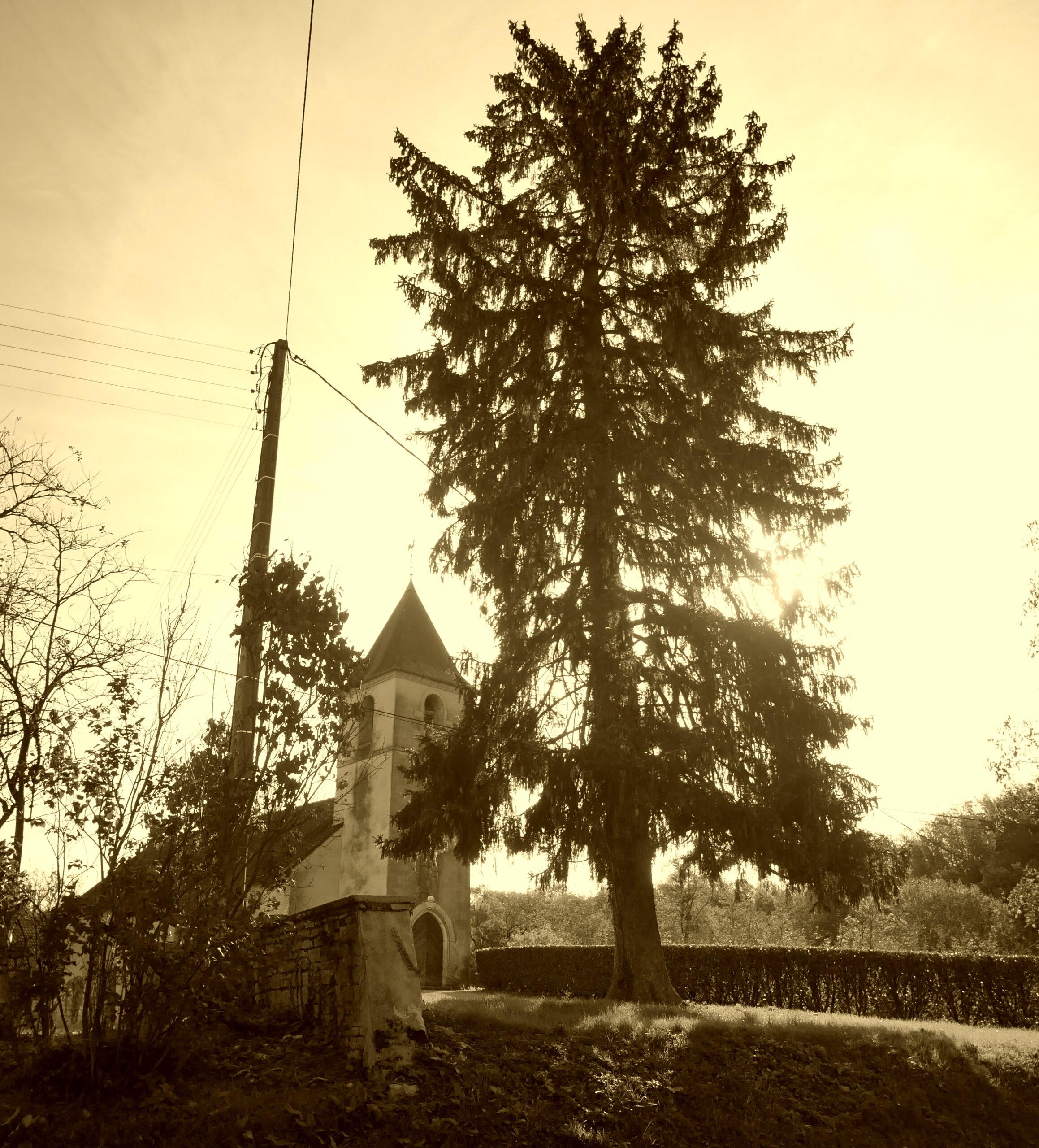 Un rayon de soleil automnal sur l'église de Courlans