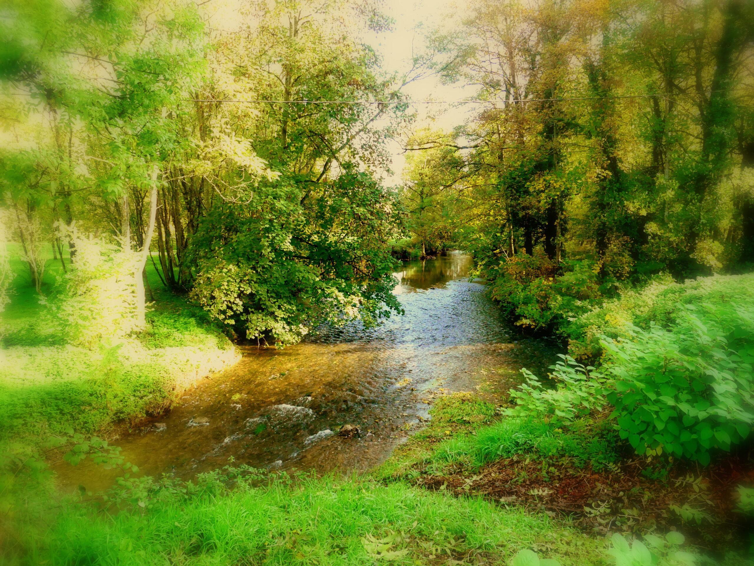 La Vallière un matin d'automne